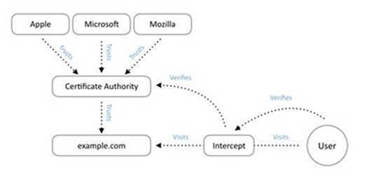 diagrama-cadena-certificado-ssl-tls-2